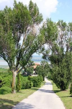 Toscana de Dragasani