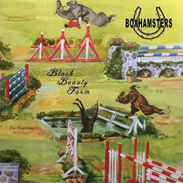 Boxhamsters – Black Beauty Farm -