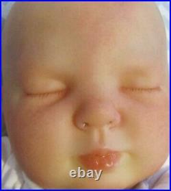 Real Reborn Doll 20 Bountiful Baby Girl Rose By Dan At Sunbeambabies Ghsp 5lbs 07 wyyd