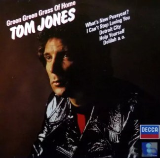 Tom Jones - Green Green Grass Of Home (LP, Comp)