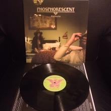 Platz 8: Phosphorescent - Muchacho
