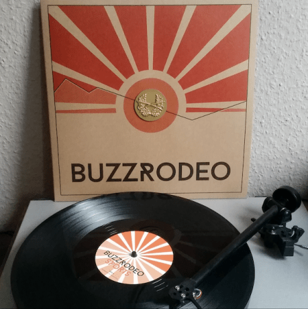 Vinyl Beauties: Buzz Rodeo - Sports