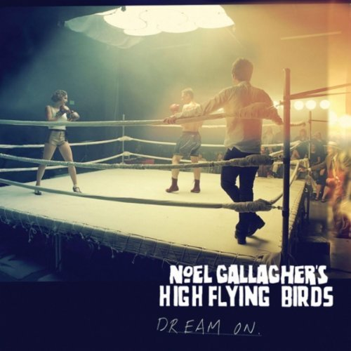 The top 7 collectable Noel Gallagher records