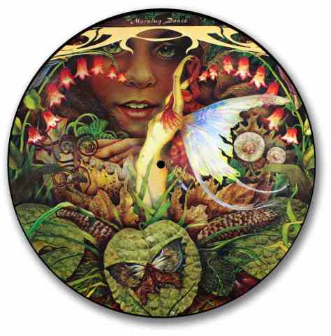 Spyro Gyra, Morning Dance Picture Disc