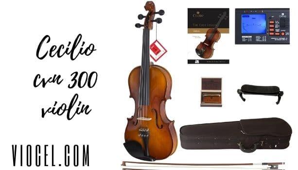 Cecilio cvn 300 violin