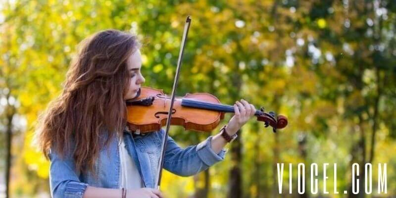 how to choose a best violin