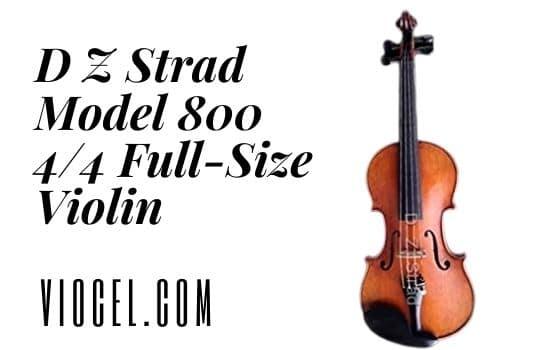 D Z Strad Model 800 4/4 Full-Size Violin