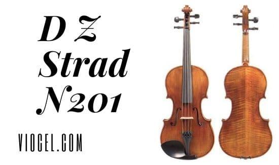 D Z Strad N201