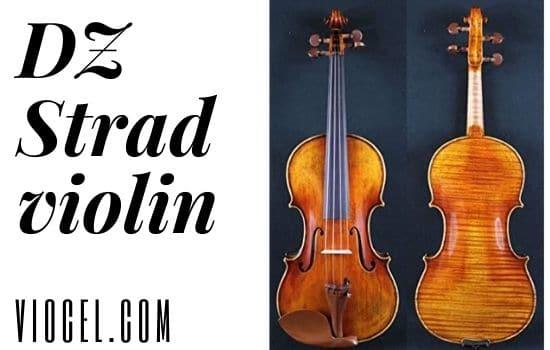 DZ strad violin