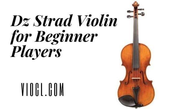 Dz Strad Violin for Beginner Players