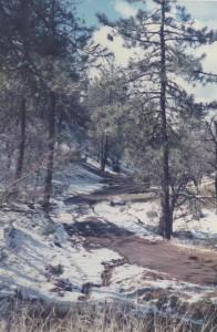 A rural road east of Mount Hamilton (Santa Clara County)