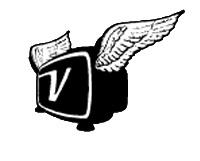 ViodiTV logo