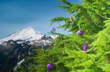 alpine-christmas