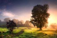enchanted-abbey_1914053i