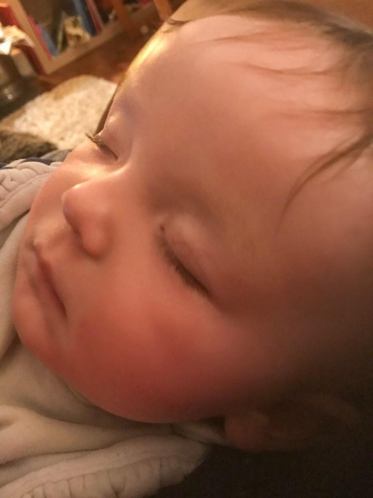 A sleeping Aurora who prefers to be cuddled as she sleeps - Violet Skies