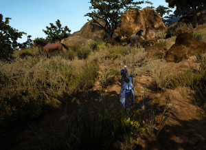 BDO Stonebeak Shore Horse Location