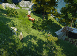 BDO Ancient Stone Chamber Node Horse Location