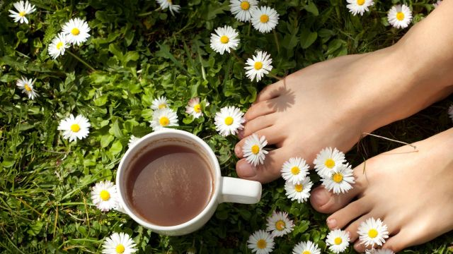 self care moment, bare feet in the grass, a cup of tea and daisies