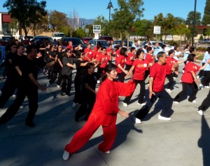 100 Men Tai Chi (provided by Joy of Kung Fu)