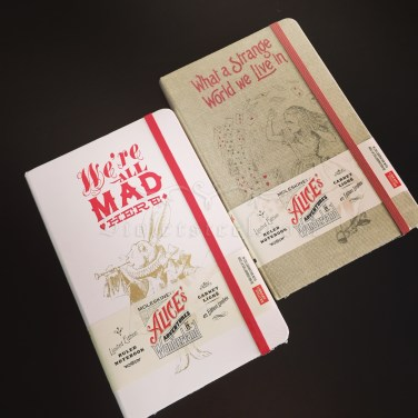 The 2 Large (cm 13x21, in 5.1x8.3) Ruled notebooks I ordered