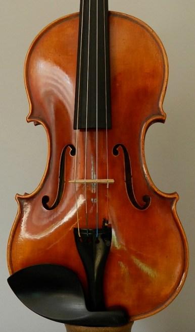 violinbresia-t