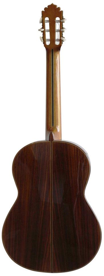 GuitarraFGMadagascar-F