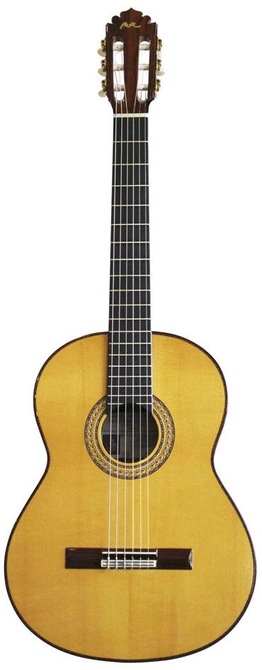 GuitarraFGMadagascar-T