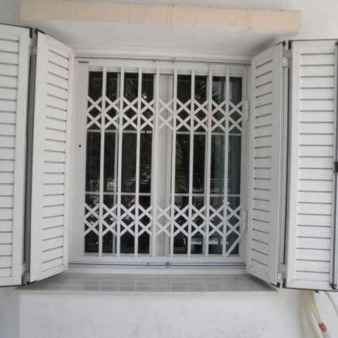 Reja de seguridad de una única hoja en la ventana.