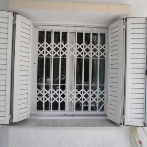 Monolayer railing Security in Window