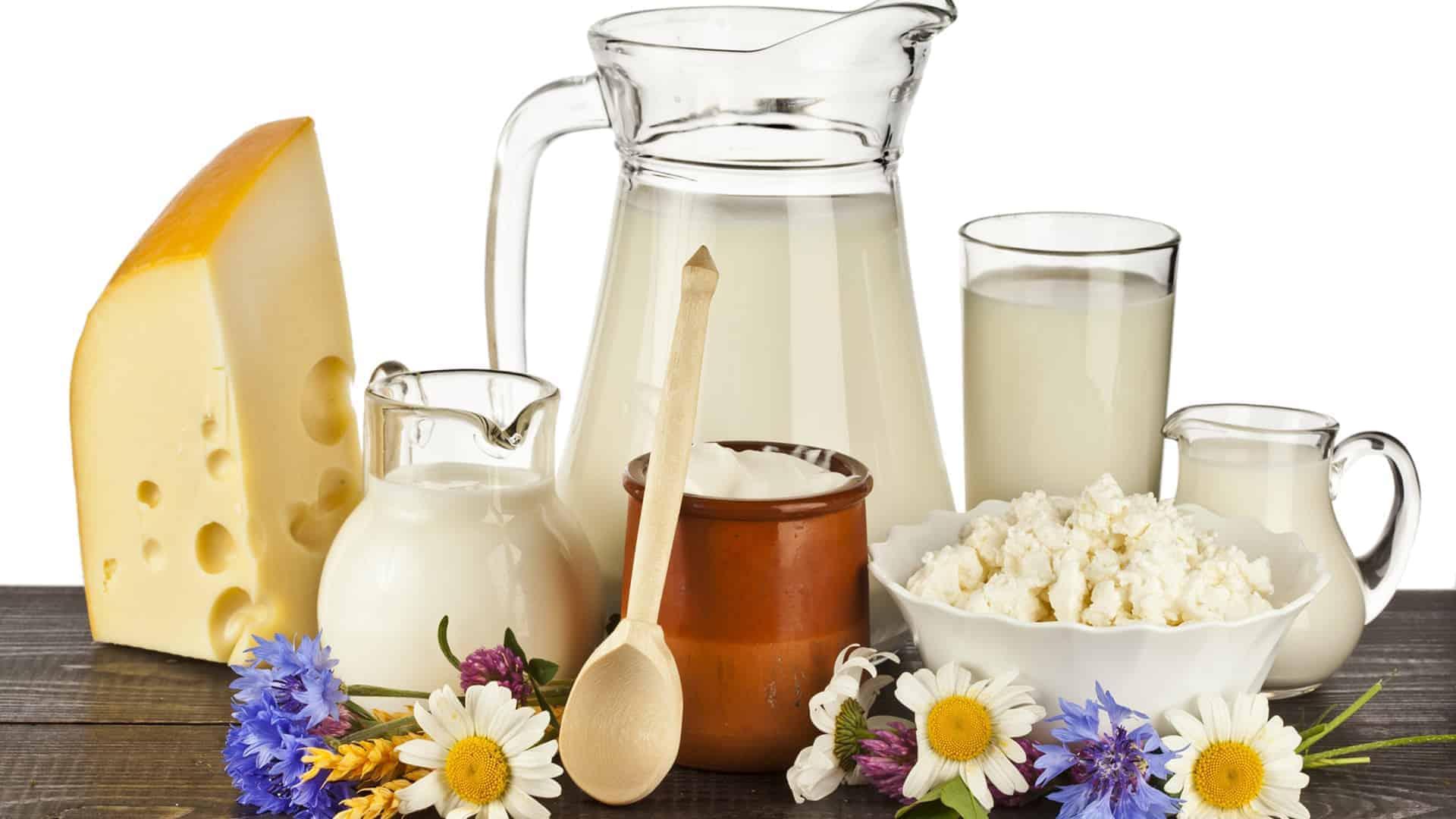 România a importat produse lactate şi ouă în valoare de 84,8 milioane de euro