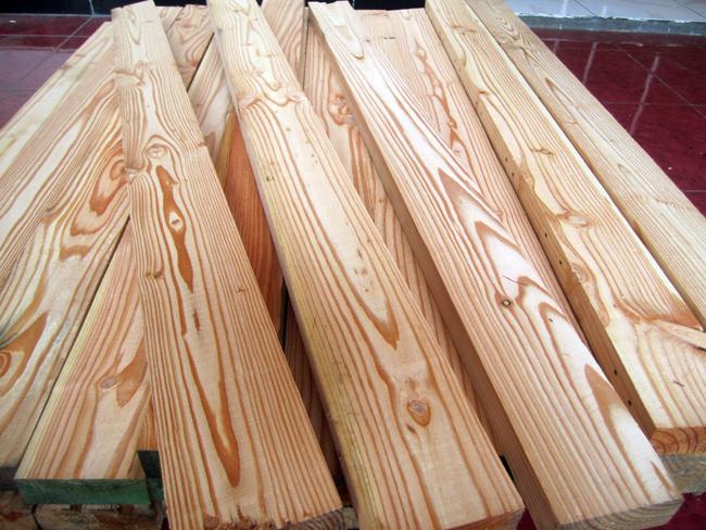 Pinus Blogs Gambar Dan Yang Lainnya Di Wordpress
