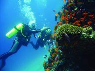 Das Rote Meer ist ein Bade- und Tauchparadies