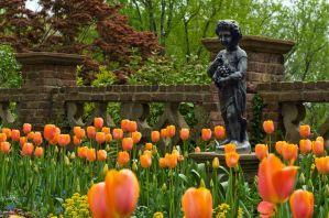 Virginias Gärten sind im Frühjahr ein wahres Blütenmeer