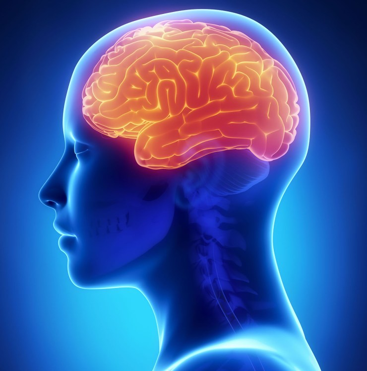 All You Need To Know About Dementia And Alzheimer's Disease. 10