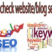 How To Check Your Website/Blog SEO Score! Keyword Rank By Urdu Point