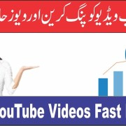 How to Rank YouTube Videos/Website Fast By Ping In Urdu/Hindi Tutorial