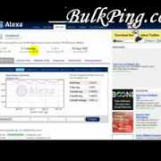 Tutorial : Check Your Website's Alexa Ranking!  Free online seo tools on bulkping for Website Seo