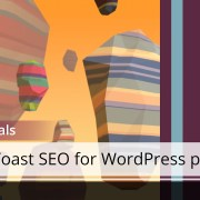 Yoast SEO for WordPress training - Metabox: Focus Keyword and Content Analysis Tab