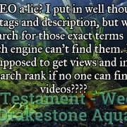 2019 New Testament 07 - Is SEO a lie? Test video