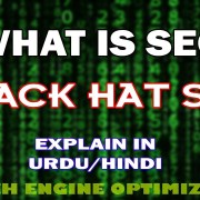 What is SEO and Black Hat SEO | Search Engine Optimization