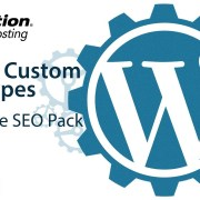 Enabling All in One SEO Pack for Custom Post Types in WordPress
