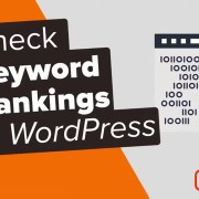 How to Check If Your WordPress Blog Posts Are SEO Friendly
