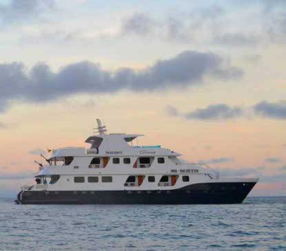 cormorant yacht packages