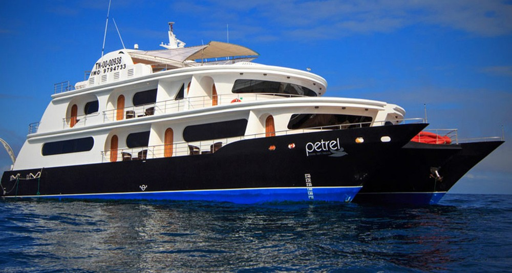 Petrel Galapagos Yacht Promotion! Up to $750 Off Rates | VIP Journeys
