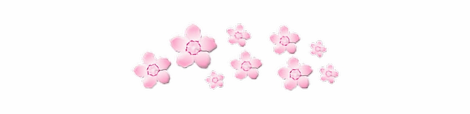 Flower Crown Pink Soft Pinkaesthetic Transparent Cute Transparent Pink Aesthetic Stickers Transparent PNG Download #266943 Vippng