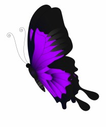 Purple Flying Butterfly Png Clip Art Green Butterfly Clipart Transparent Background Transparent PNG Download #2601035 Vippng