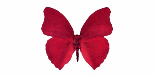 Borboleta Tumblr Red Aesthetic Freetoedit Transparent Red Butterfly Png Transparent PNG Download #3073694 Vippng