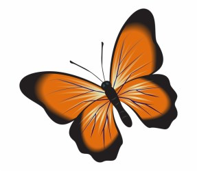 Clip Art Free Image On Pixabay Insect Butterfly Clipart Transparent Background Transparent PNG Download #3864913 Vippng