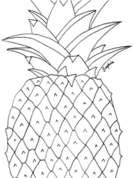 pineapple outline png Drawn Pineapple Transparent Pineapple Pictures To Colour #2347064 Vippng