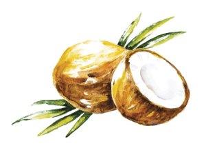 MCT Coconut oil